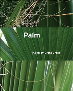 Palm: Haiku by Grant Cross